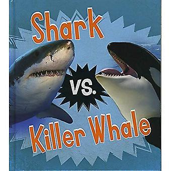 Hai vs. Killerwal (lesen und lernen: tierische Rivalen)