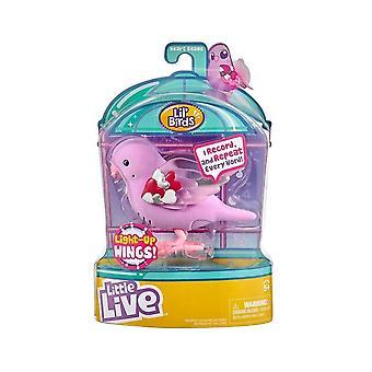 Little Live Pets Leuchten Singvögel S9 (Herzstrahlen)