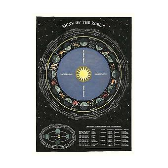 Cavallini Zodiac Wrapping Paper Poster/ Poster High Quality / Decoupage