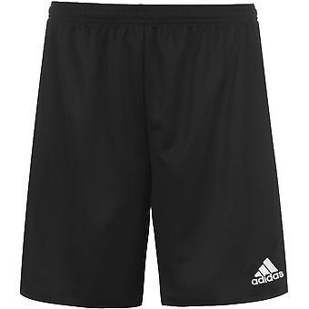 adidas Squad Shorts Ladies