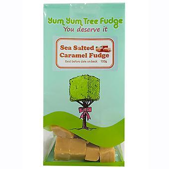 Yum Yum Tree Sea Salted Caramel Fudge