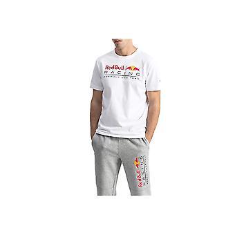 Puma Red Bull Racing Logo Tee 59537003 universal all year men t-paita