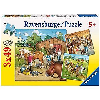 FengChun Kinderpuzzle 09237 - Mein Reiterhof - 3 x 49 Teile
