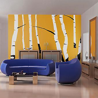 Fototapetti - Birches on the orange background