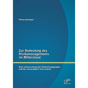 Zur Bedeutung des Risikomanagements im Mittelstand Eine Untersuchung des Verbreitungsgrades und der verwendeten Instrumente by Lehmeyer & Petra