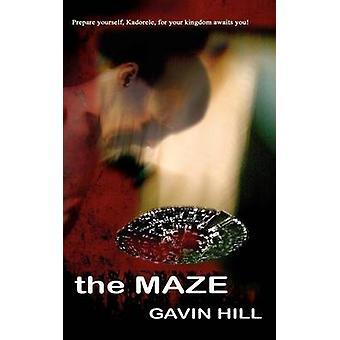 The Maze by Hill & Gavin