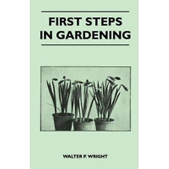 First Steps in Gardening  A Concise Introduction to Practical Horticulture Showing Beginners How to Succeed with All the Most Popular Flowers Fruit by Wright & Walter P.