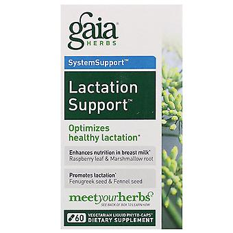Gaia Herbs, SystemSupport, Lactation Support, 60 Vegetarian Liquid Phyto-Caps