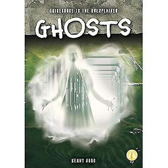 Guidebooks to the Unexplained: Ghosts