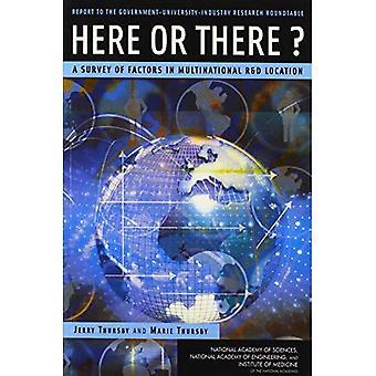 Qui o là?: un'indagine dei fattori nella posizione di multinazionali R&D, relazione alla tavola rotonda ricerca governo-università-industria