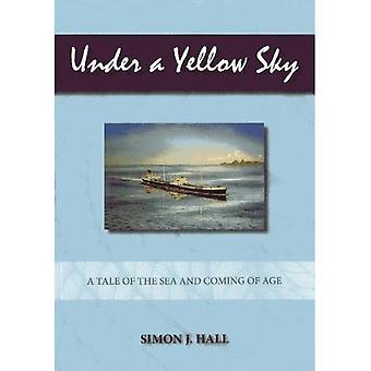 Under en gul himmel: en berättelse om havet och kommande ålder