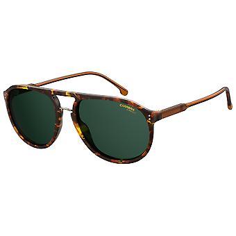 Carrera 212/S 086/QT Dark Havana/Green Sunglasses