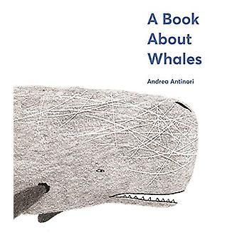 A Book About Whales by Andrea Antinori - 9781419735028 Book