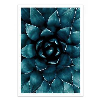 Kunstplakat - Kaktus nr.