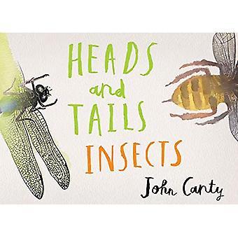 Hoveder og haler: Insekter