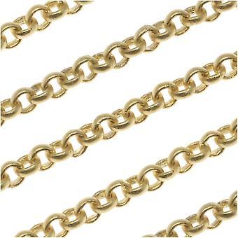 ماتي الذهب مطلي رولو سلسلة 3mm من القدم