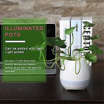 Unique Tokqi Smart Music Flower Pots Bluetooth Night Light Touch Capteurs