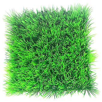 Betta Choice Dwarf Hairgrass Mat 25 X 25cm