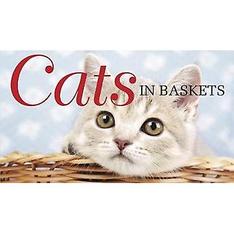 Cats in Baskets by Scratching & Kat