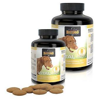 Belcando Vital-Tabs (Dogs , Supplements)