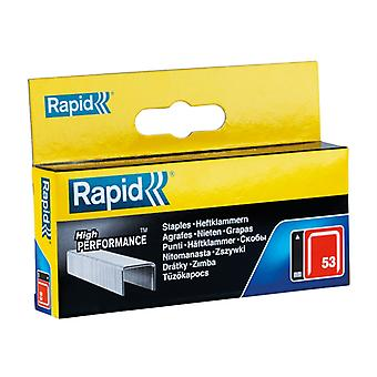 Rapid 53/10B 10mm Galvaniseerde Staples Box 2500 RPD5310B2500