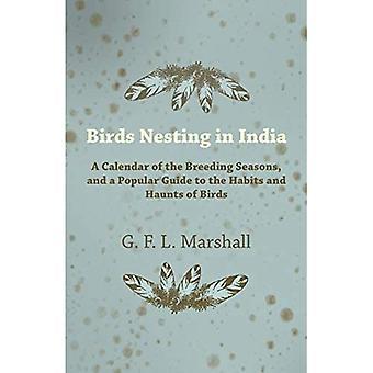 Oiseaux nichant en Inde