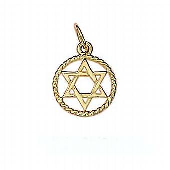 9ct золотые равнины звезда Давида 12 мм витая проволока круг кулон