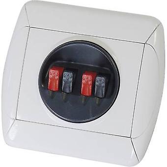 Doppel Klemme 204998 1 PC