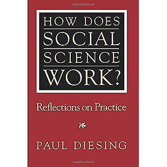 Como funciona a ciência Social?: reflexões sobre a prática
