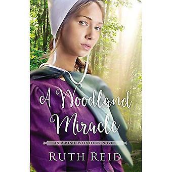 Um milagre da floresta (a série de maravilhas Amish)