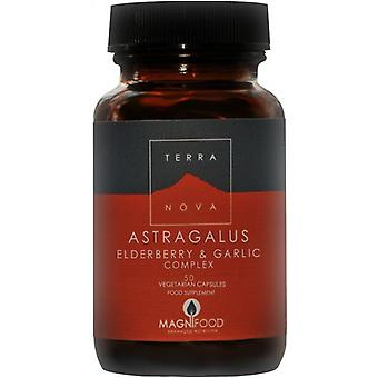 Terranova Astragalus, sabugueiro e alho Vegicaps complexo 50 (T1773)