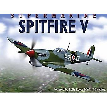 Spitfire Metal Wall Sign