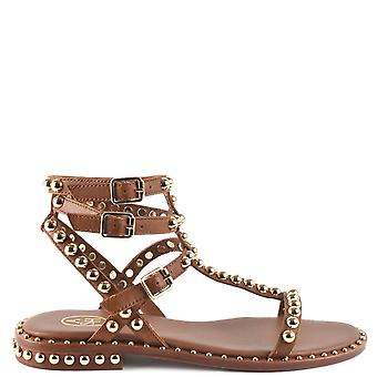 Ash PLAY Studded Sandals In Brown Leather