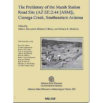 The Prehistory of the Marsh Station Road Site (AZ EE -2 -44 [ASM]) - Ci