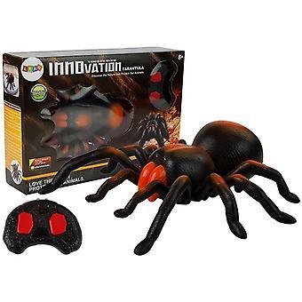 Tarantula Giant Spider Controllabile Black – Giocattoli RC