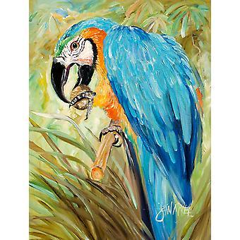 Carolines skatter JMK1147CHF blå papegøyer flagg lerret huset størrelse
