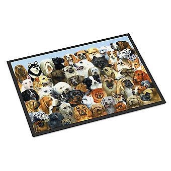 Carolines Treasures  BDBA0441MAT Fifty One Dogs Indoor or Outdoor Mat 18x27