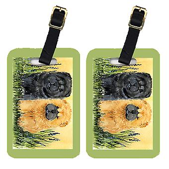 Carolines Treasures  SS7006BT Pair of 2 Chow Chow Luggage Tags