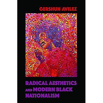 Estética radical e moderno nacionalismo negro (nova série de estudos negros)