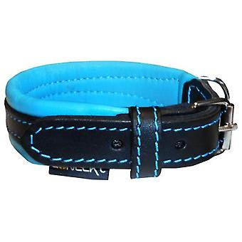 Num'axes Everyday Life Coneckt Leather Collar -Black/Blue