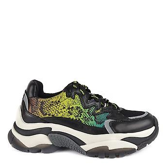 Ash ADDICTION Sneakers Snake Print & Black Leather