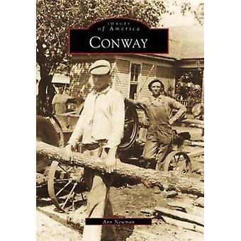 Conway by Ann Newman - 9780738502304 Book