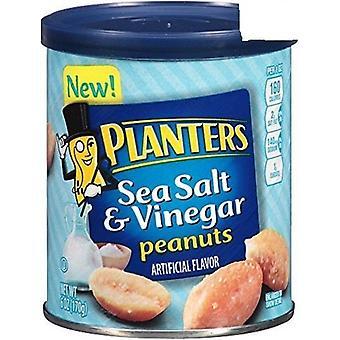 プランター海の塩・酢ピーナッツ