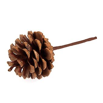 12 Natural Pine Cones on Picks for Floristry Crafts