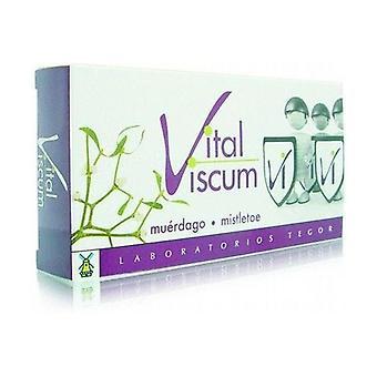 Vital Viscum 40 capsules