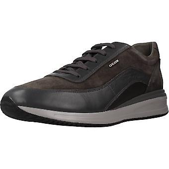 Geox Sport / U Dennie Color C6372 Sneakers