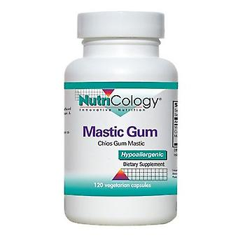 Nutricology/ Allergy Research Group Mastic Gum, 240 Veg Caps