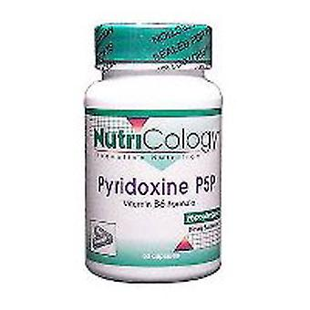 Nutricology/ Allergy Research Group Pyridoxine B-6, 60 Caps