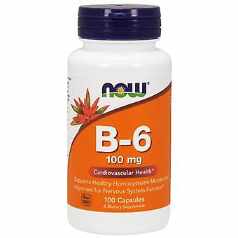 Teraz Pokarmy B-6 100 mg, 100 Czapki