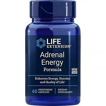 Life Extension Bijnier energie Formule Vegicaps 60